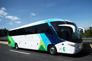 e-bus-autobuses