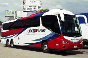 ovnibus-autobuses