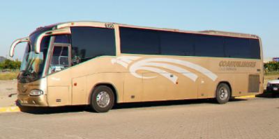COAHUILENSES-autobuses