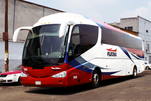 flecha-autobuses