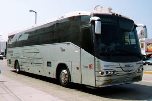 tamaulipas-autobuses