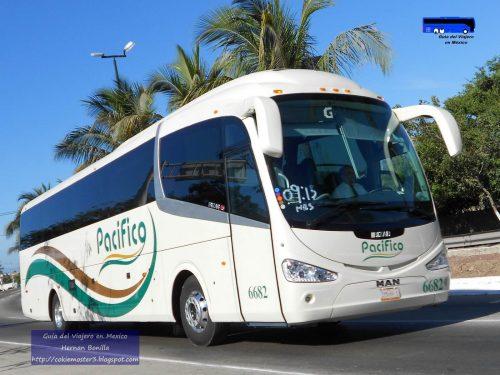 autobuses pacifico boletos