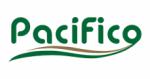 logotipo autobuses pacifico